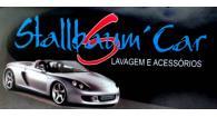 Tchê Encontrei - Stallbaum' Car Lavagem e Acessórios – Lavagem e Acessórios em Canoas