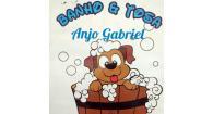 Tchê Encontrei - Banho e Tosa Anjo Gabriel – Banho e Tosa em Canoas